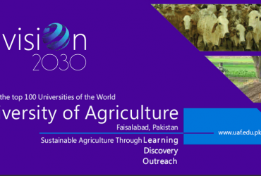 Govt : University of Agriculture Faisalabad