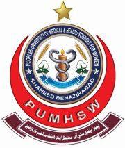 NURSING INSTITUTE PUMHS Sindh